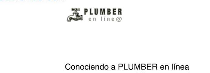Presentacion-La-Interfaz-de-PLUMBER-en-Linea
